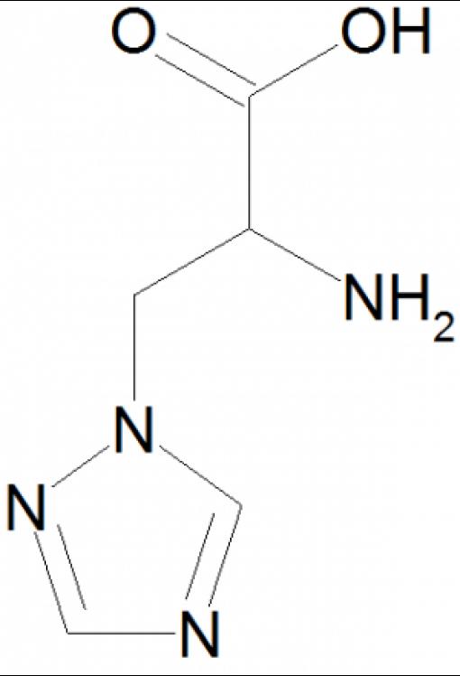 Triazole alanine