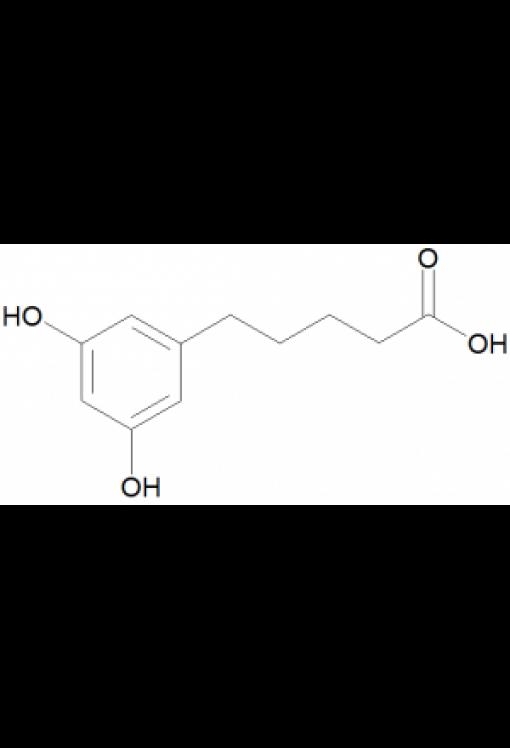 5-(1,3-Dihydroxyphenyl)pentanoic acid