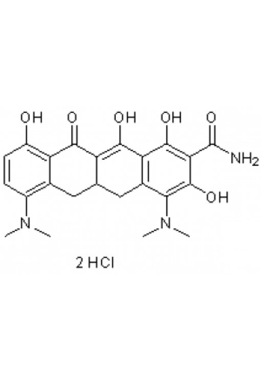 A-Ring aromatic Tetracycline